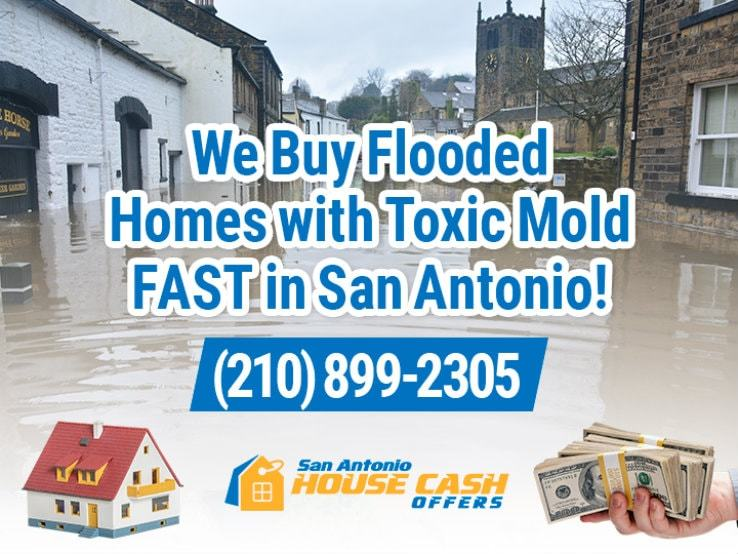 san antonio water damage and mold